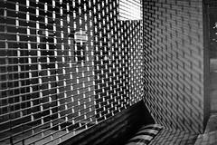 (bisonte invencible) Tags: blackandwhite biancoenero blancetnoir blancoynergo film 35mm leica m6 analógica analógico blancoynegro