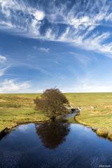 Pennine Sky (Robert J Heath) Tags: trees lake water clouds horizon reservoir