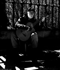 The song of the Shadow. (Neil. Moralee) Tags: street old city shadow blackandwhite bw musician music sunlight white toronto ontario canada man black cold monochrome hat contrast fence dark beard mono nikon sitting shadows play sad guitar outdoor candid neil nike mature singer glove busker whitebeard d7100 moralee neilmoralee canadaneilmoraleenikond7100
