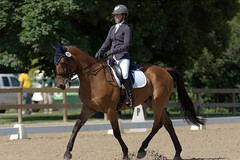 Ring 1 (Tackshots) Tags: horse illinois riding barrington dressage eventing horsetrials frvpc