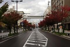 Japan12_0740 (wallacefsk) Tags: japan aomori  tohoku