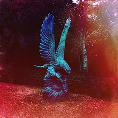 Made with @mexturesapp #mexturesapp  Eagle Head (William Adam) Tags: art netherlands statue square eagle head denhaag squareformat thehague myth williamadam eaglehead iphoneography instagramapp mexturesapp
