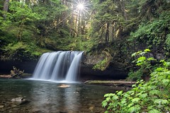 As sunshine flows into trees (CarlaAxtmanPhotography) Tags: oregon waterfalls upperbuttecreekfalls oregonlandscapephotography