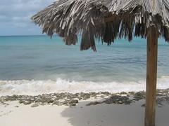 Palm beach/Aruba (DidyvL) Tags: strand vakantie zee parasol schaduw helder zon zwemmen golven tropisch snorkelen caribisch