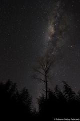Nada como o céu noturno longe das luzes da cidade (fabsciack) Tags: night noite nightphoto santacatarina fotonoturna vialactea fraiburgo valedocontestado