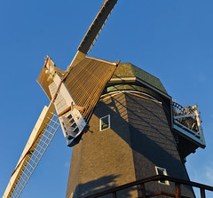 murphy fully restored (pbo31) Tags: sanfrancisco california goldengatepark summer panorama color windmill nikon large august panoramic restoration d200 stitched murphywindmill 2013