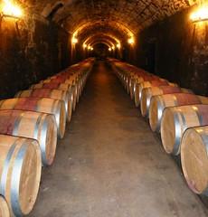 Cellars of Pontet Canet