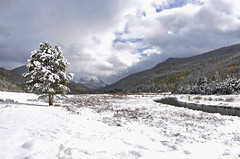 Christmas Meadows (kylesipple) Tags: christmas city winter panorama mountain lake snow fall film nature forest 35mm landscape photography mirror utah cabin woods highway uinta uintas pentax k1000 mirrorlake grain salt bald scenic meadows panoramic 150 mount saltlakecity saltlake national 35mmfilm slc mountbaldy baldy baldmountain 35mmphotography filmgrain moosehead byway uintanationalforest highway150 mirrorlakescenicbyway christmasmeadows