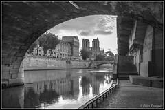 Notre Dame de Paris (Didier Ensarguex) Tags: paris cathdrale pont notredamedeparis pontsaintmichel