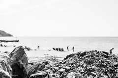 The Beach Moment. Photo 21 (Oleh Zavadsky) Tags: leica sea beach x bulgaria burgas x2 xseries   dailyinspiration  leicax2gallery