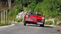 Alfa Romeo Spider Touring 1960 Imkampe (D) Ennstal-Classic ☆ Copyright © 2013 Bernhard Egger :: eu-moto images 5188