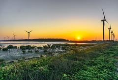 (Digital_trance) Tags: sunset sea bird nature windmill sunrise canon ship taiwan sigma 夕陽 seafood oyster 台灣 lanscape bif 生態 彰化 鳥 牡蠣 濕地 夕照 海洋 ocea 風車 貨運 蛤 70d 彰濱 肉粽角 40d 彩霞 郵輪 風景攝影 canon40d 5dmarkii 5d2 5dii canon5dmarkii eos5dmarkii canon5d2 canon5dmarkiii 5d3 canon70d 5diii