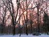 Winter Sun among branches (kontinova2) Tags: wood winter sun noon coth5 mygearandme mygearandmepremium mygearandmebronze mygearandmesilver mygearandmegold mygearandmeplatinum mygearandmediamond photographyforrecreationeliteclub flickrstruereflection1 infinitexposure