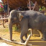 Thailande 0912 thumbnail