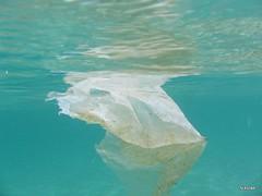 όχι σκουπίδια, όχι πλαστικά σε θάλασσες και ακτές
