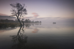 The Platform (Mark Littlejohn) Tags: tree pentax sigma kx ullswater eusmere vision:sunset=0574 vision:mountain=0785 vision:clouds=099 vision:sky=099 vision:ocean=0884 vision:outdoor=0978 vision:car=073