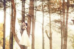 Love, wedding (Ju Link) Tags: link ju nh p ci aubestudio