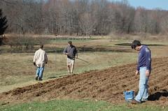 "Grains Coop Work Morning: Planting Oats <a style=""margin-left:10px; font-size:0.8em;"" href=""http://www.flickr.com/photos/91915217@N00/13943185355/"" target=""_blank"">@flickr</a>"