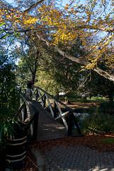 On Watch (Jocey K) Tags: bridge autumn trees newzealand christchurch sky people water leaves river shadows avon monavale avonriver