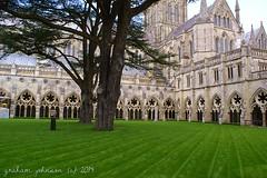 Salisbury Cathedral (gmj49) Tags: sony salisbury wiltshire cathderal gmj a350
