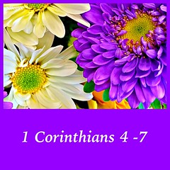 243 (EDWW day_dae (esteemedhelga)) Tags: life flowers plants love beach me nature beauty loving garden blessings creativity hope living walks alone remember peace hand risk friendship time god you faith joy lakes parks belief celebration intelligence thoughts together gift quotes soul future dreams passion knowledge laughter worry strength care tomorrow happyholidays yesterday ponds teach sayings herb learn struggle fellowship gentle courage nightmares nurseries postive encouragment edww daydae esteemedhelga helpconfidence