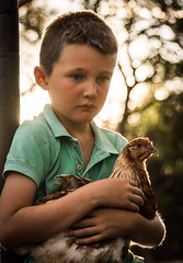 The sun is setting, the sun will rise another day... (adustylife) Tags: chicken sunshine kids nikon flickr naturallight australia agriculture southaustralia countrylife settingsun ruralexploration