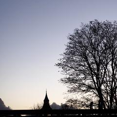 silhouette (Cosimo Matteini) Tags: sky tree london silhouette thames pen square olympus riverthames m43 mft 45mmf18 ep5 mzuiko cosimomatteini