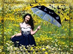 Titula tu transparencia - Amparo Garca Iglesias (Amparo Garcia Iglesias) Tags: blue white flores primavera blanco yellow azul photos colores amarillo fotos garcia iglesias amparo