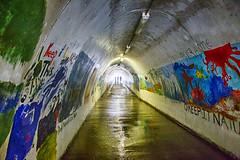 Tunnel Vision (Kansas Poetry (Patrick)) Tags: crystalcove danapoint lagunabeach califormia patrickemerson patricknancydocalifornia