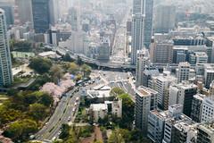 (Felix Lai Photography) Tags: jp  tokyotower minatoku  tkyto