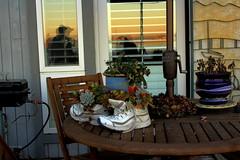Sunset still-life (malyeena) Tags: california ca light sunset stilllife beachlife