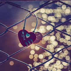 Dia dos Namorados (Romildox) Tags: day 14 dia dos corao 12 so namorados santo fevereiro chaves antnio fechaduras junho valentines parquecidade valetim romildoxhexainfojk