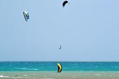 23_05_2016 (playkite) Tags: kite egypt vacations hurghada elgouna  2016