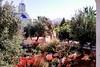 2 Bedroom Estate Villa - Paros #20