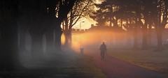 Pontcanna Morning (wentloog) Tags: road park uk morning winter light shadow red sky sun mist tree grass leaves silhouette fog wales sunrise canon eos dawn britain outdoor branches cymru january cardiff caerdydd figure fields 5d redsky llandaff pontcanna wentloog llandafffields stevegarrington