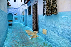 IMG_3640 (rachel_salay) Tags: city blue morocco chefchaouen