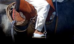 Sencillito y de alpargatas (Eduardo Amorim) Tags: horse southamerica argentina caballo cheval lazo spur sperone pferde poncho cavallo cavalo gauchos pferd ayacucho pampa loro hest pala hevonen gaucho staffa badana  amricadosul loros stirrup carona lao hst gacho estribo  amriquedusud provinciadebuenosaires  recado gachos  sudamrica esporas suramrica amricadelsur  sdamerika alpargata espora  pilchas espuelas  buenosairesprovince pilchasgauchas steigbgel recao pampaargentina americadelsud rebenque espuela sobrepuesto  americameridionale eduardoamorim estribera estrivo trier pampaargentino