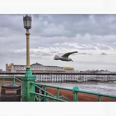 Brighton, UK (Ligia M Lo Re) Tags: uk greatbritain inglaterra england beach seaside brighton unitedkingdom brightonbeach praias iloveuk ilovebrighton beachuk