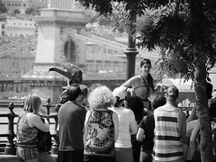 Little Princess of Budapest and her tourist subjects (un2112) Tags: bridge summer people blackandwhite bw monochrome june hungary budapest streetphotography statues tram tourists littleprincess humans chainbridge touristguide