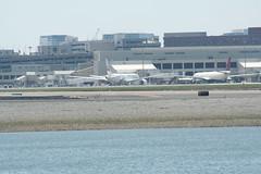 IMG_2497 (wmcgauran) Tags: boston airplane airport aircraft aviation bos eastboston kbos