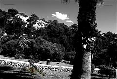 blackn w nred (ryancarter2012) Tags: menorca cala galdana