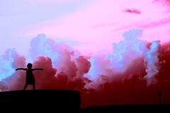 Fly Higher, Fly Faster (Thomas Hawk) Tags: silhouette clouds fav50 atlantis bahamas nassau paradiseisland fav10 fav25 fav100