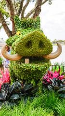2016(03)-3341 (Keebles) Tags: epcot disneyworld wdw outpost worldshowcase epcotflowergardenfestival fgfestival disneytrip2016