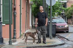 French Quarter Portrait (Tony Webster) Tags: portrait dog us louisiana unitedstates neworleans frenchquarter governornichollsstreet
