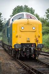 55007 (deltic17) Tags: loco locomotive napier deltic class55 class40 royalscotsgrey d213 barrowhillroundhouse andania