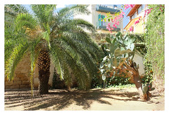 Bagheria 2016-06-10-6160 (Rapid Rectilinear) Tags: sicily fujifilm sicilia bagheria villapalagonia