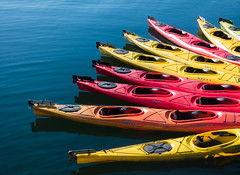 Colorful Kayaks (Lee Edwin Coursey) Tags: 2016 alaska uncruise adventure colorful kayak kayaks landscape nature ocean travel