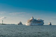 Mistral - AIDAaura - MeinSchiff5 (*GMT*) Tags: cruise schiff kiel aida kreuzfahrt aidaaura meinschiff5
