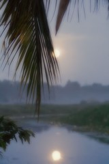 Full Moon Whilst Awaiting the Birds (Kamal50) Tags: nature canon landscape caribbean westindies