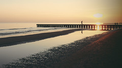 Thoughtful sunset (Stefano Montagner - The life around me) Tags: sunset seascape landscape olympus cavallino olympusomd thelifearoundme stefanomontagner em5markii em5mkii